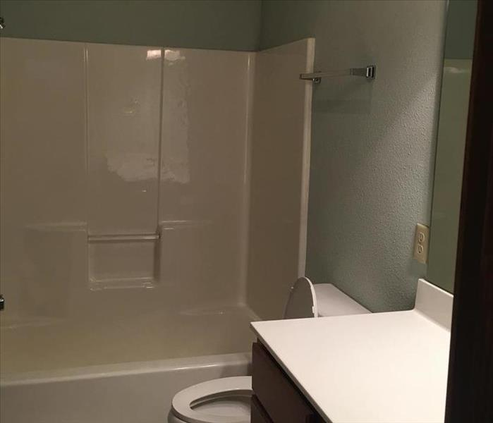 Branson Area Mold Infestation After