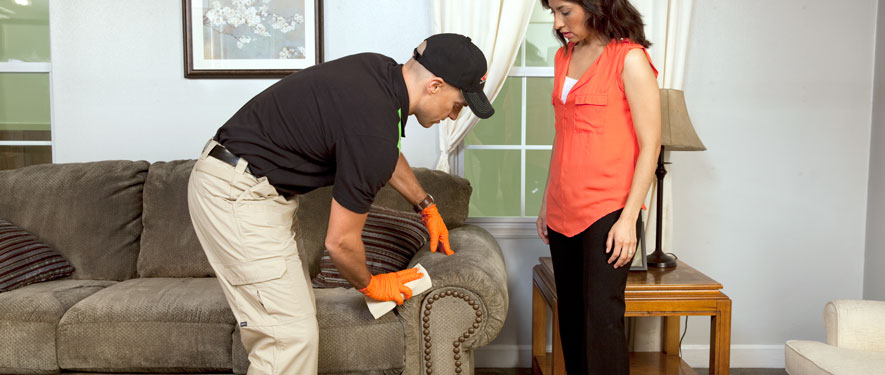 Nixa, MO carpet upholstery cleaning